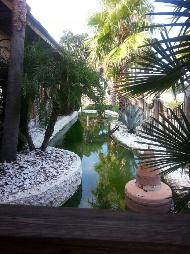 A fish pond flows around the restaurant.