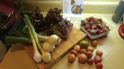 Vidalia Onions, Cherry Tomatoes and fresh strawberries are a few of the things I picked up from the farmers' market.
