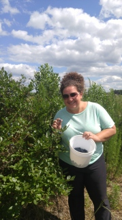 Picking blueberries is so much fun!